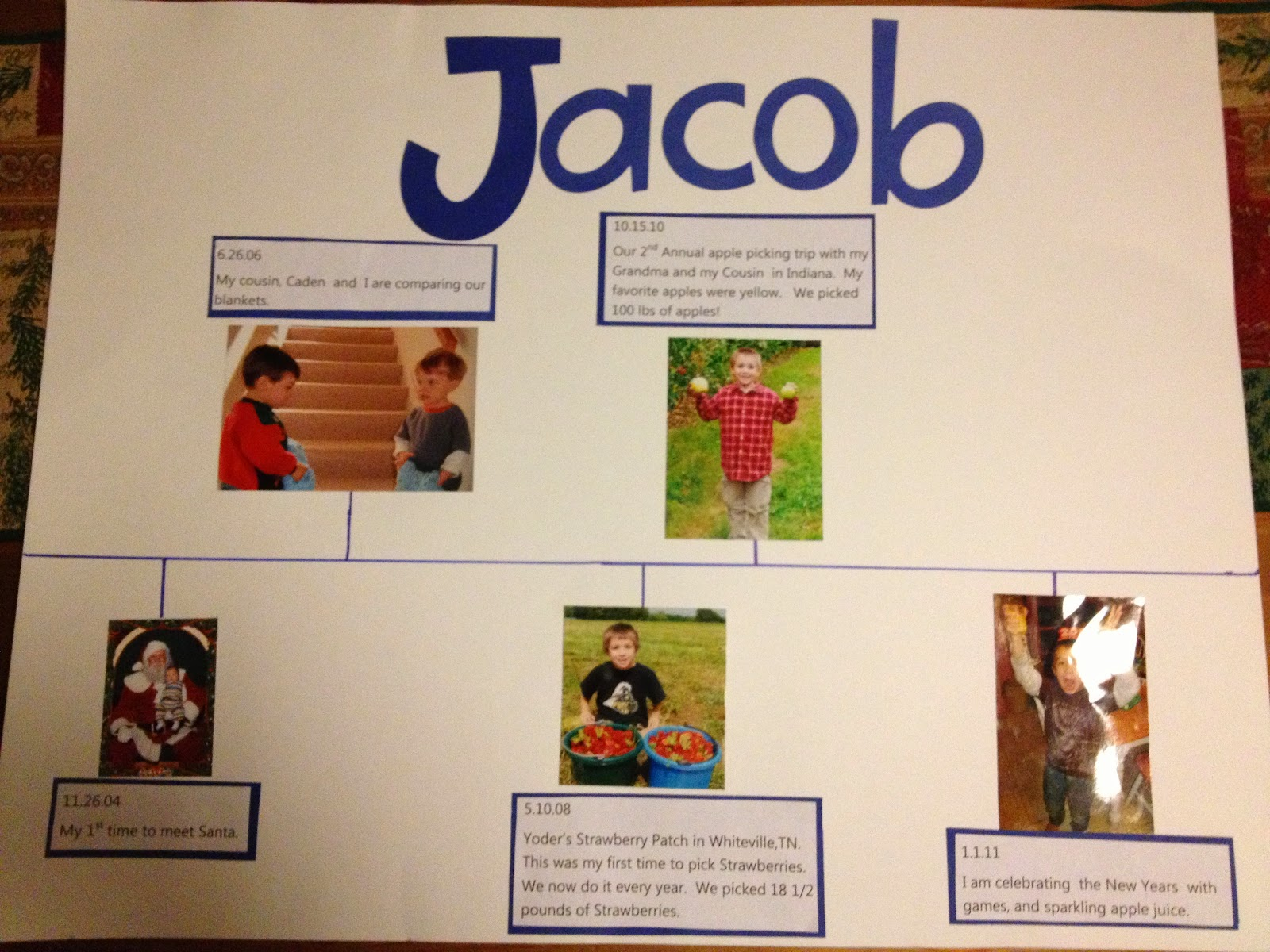 Timeline School Project Life