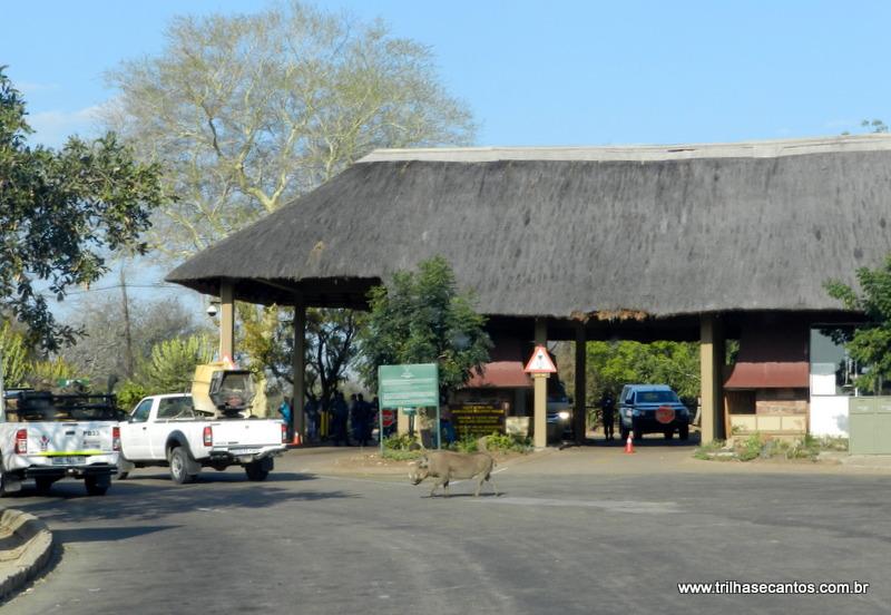 Kruger Park, África do Sul