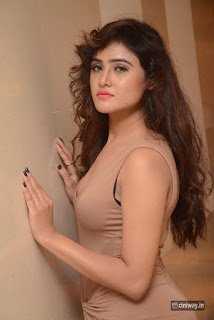 Sony Charishta Stills at Celebrations of 101 Trendz Exhibition Curtain Raiser Press Meet