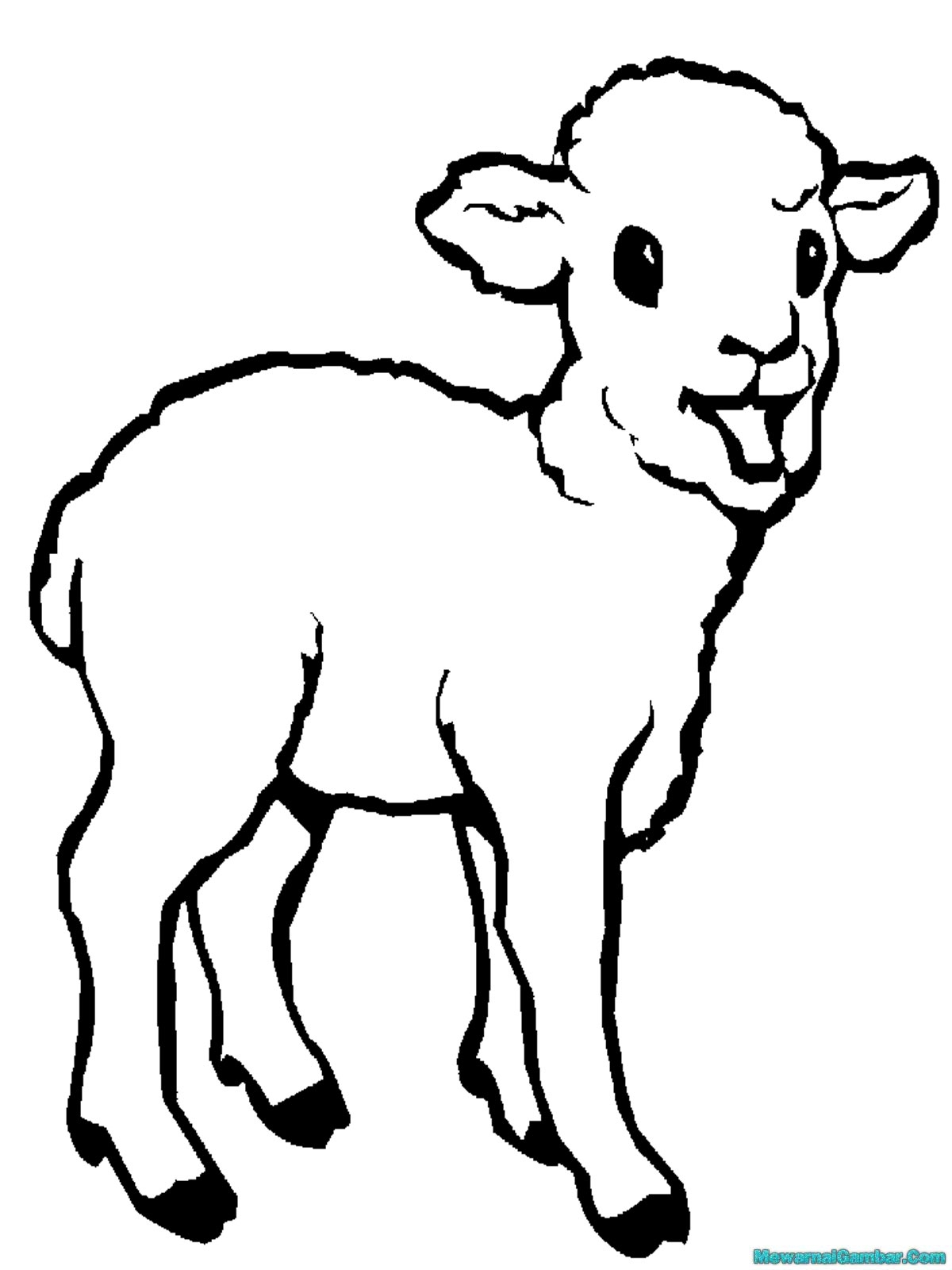 Gambar Kartun Binatang Kambing