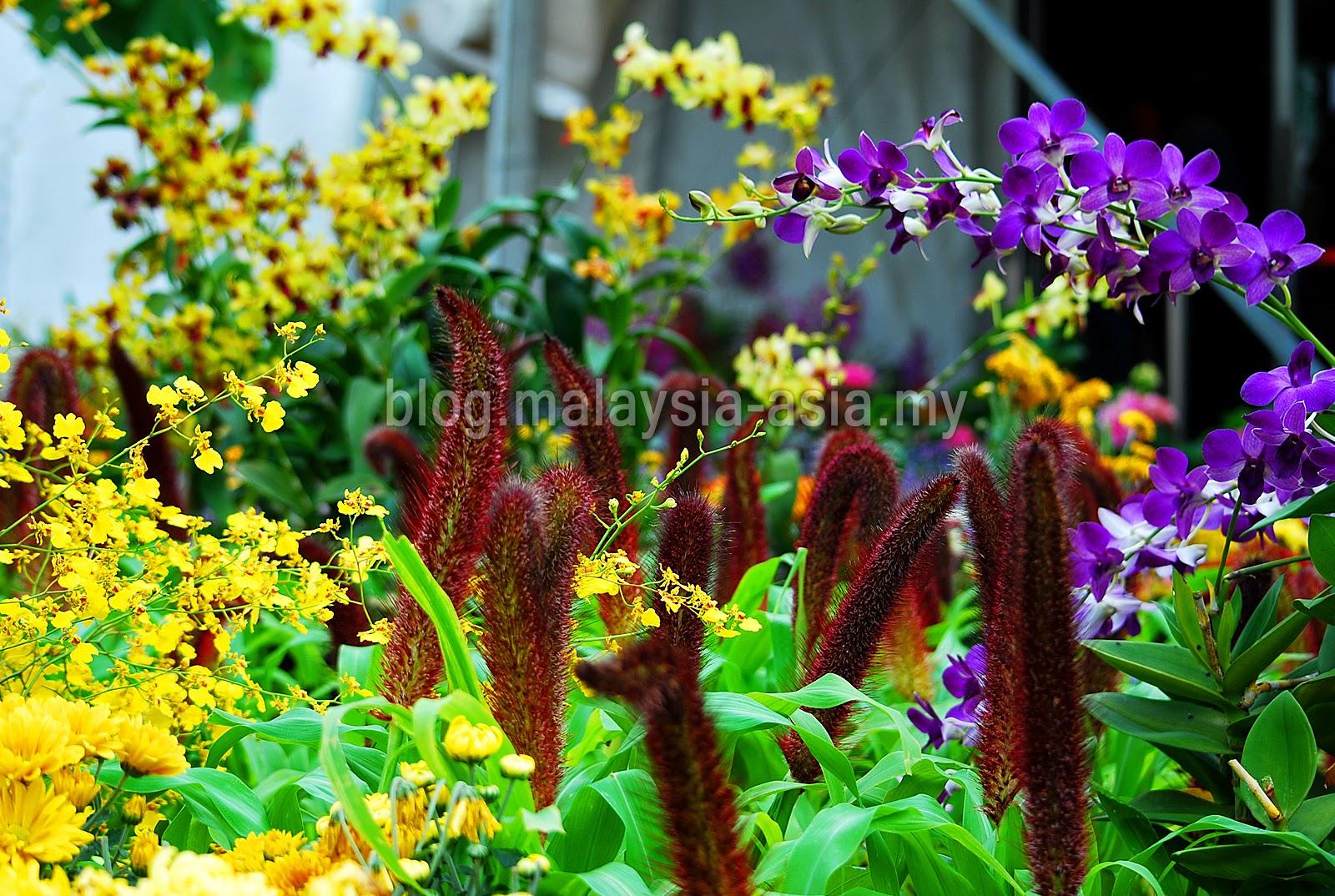 Penang Flower Festival 2015