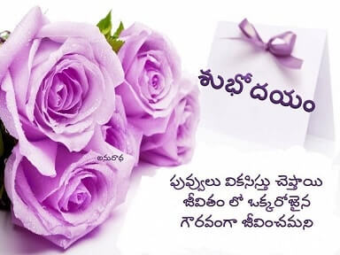 Best Good Morning Telugu Quotes