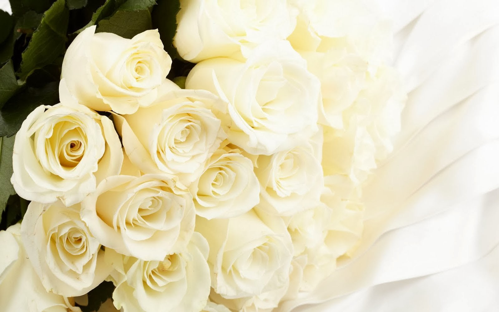 Wallpapers White Rose Bouquet Wallpapers