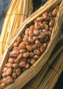 Fermented Soy Beans