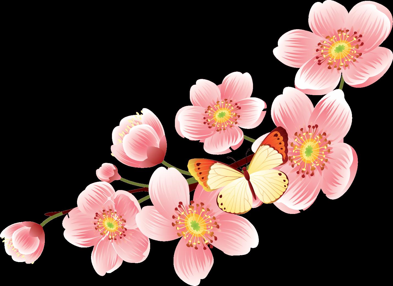 весенние цветы картинки для оформления редкие соцветия практически