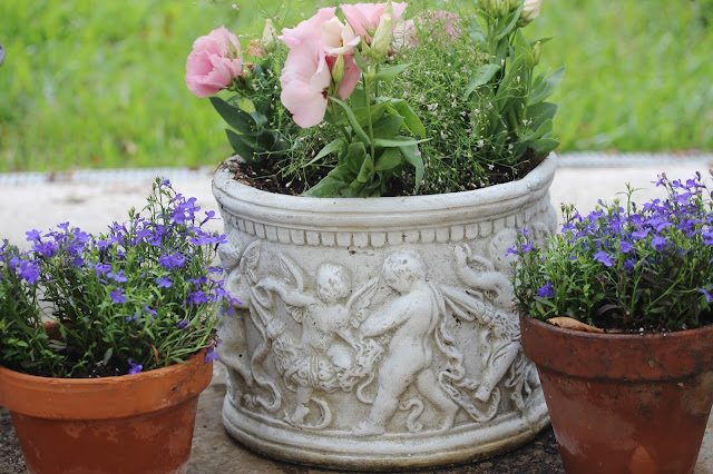 Rooted in thyme joie de vivre joy of life for Vivre container