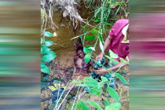 Lelaki Maut Diserang Beruang Ketika Kutip Durian