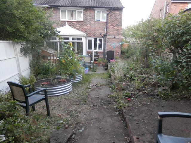 Diary of a suburban edible garden, July 2017. By UK garden blogger secondhandsusie.blogspot.com #permaculture #suburbanpermaculture #organicgarden #raisedbeds #growyourown #ukgardenblogger