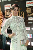 Poonam Kaur in Beautiful Floor Length Gown at IIFA Utsavam Awards 2017  Day 2  Exclusive 15.JPG