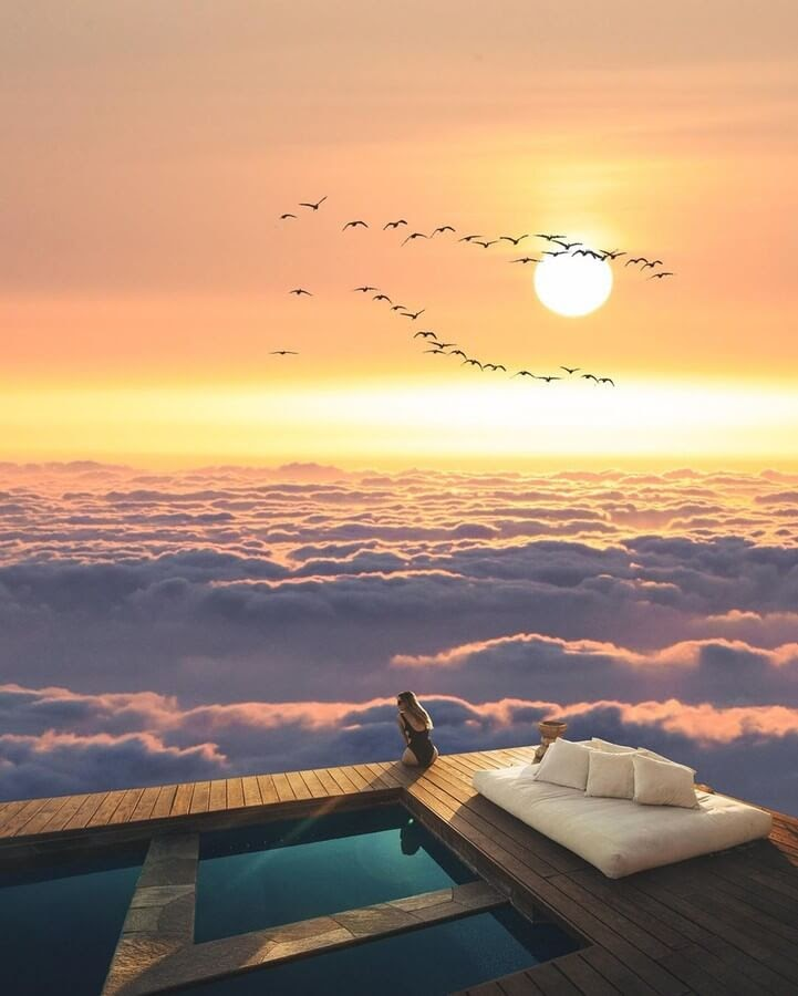 04-A-bed-above-the-clouds-Suri-Animals-www-designstack-co