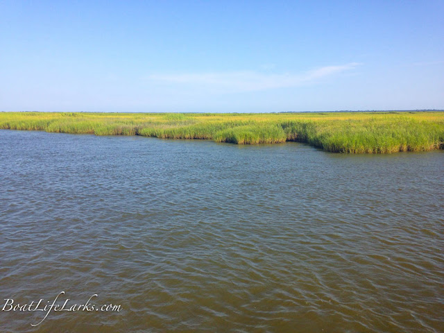 Saltwater Marshes, Northbound, ICW, South Carolina