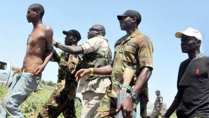 borno state politician arrested supporting boko haram