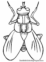 fly cartoon insect coloring pages