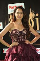 Pragya Jaiswal Sizzles in a Shantanu Nikhil Designed Gown  Exclusive 037.JPG