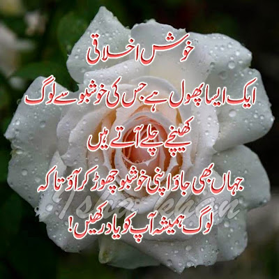 Quotes | Islamic Quotes | Urdu Quotes | Quotes Pics | Famous Urdu Quotes | Urdu Poetry World,Urdu Poetry 2 Lines,Poetry In Urdu Sad With Friends,Sad Poetry In Urdu 2 Lines,Sad Poetry Images In 2 Lines,