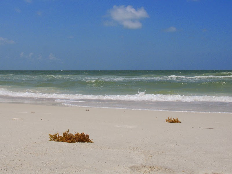 Photo de la plage à Bradenton Beach en Floride