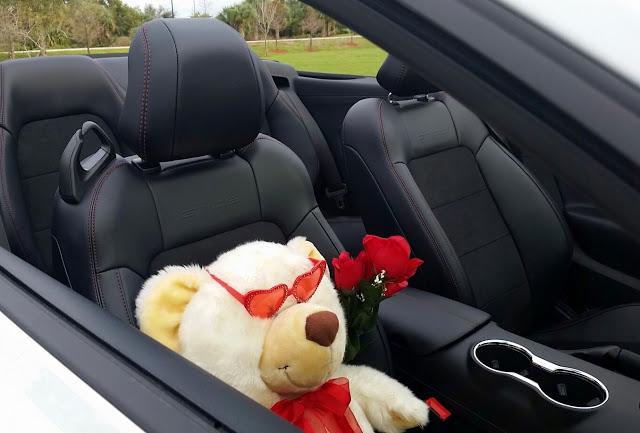 7 Ways for Sassy Singles to Celebrate Valentine's Day!! 2