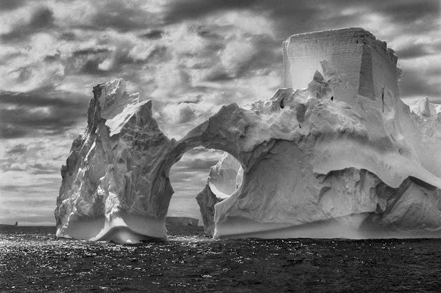 Fotografia dal progetto genesi, di Sebastiao Salgado