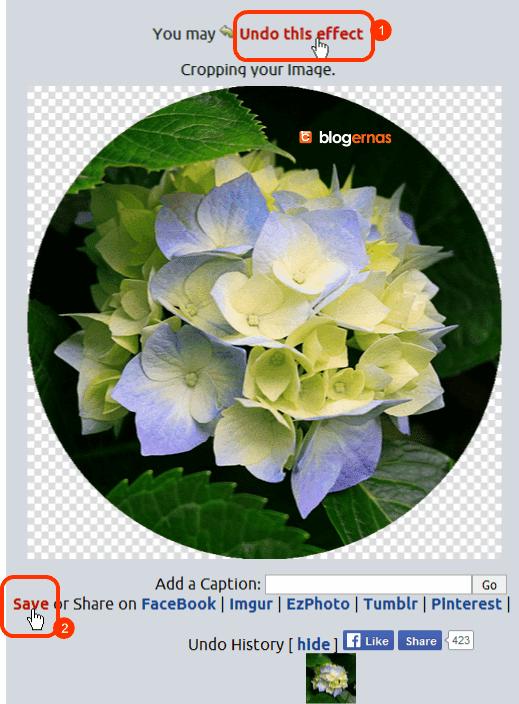 Cara Crop Online Foto di Situs LunaPic