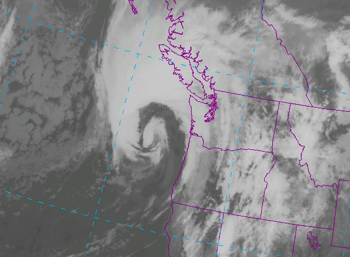 HD Decor Images » Cliff Mass Weather and Climate Blog  August 2015     storm  that would bring respect during November ravaged the region   producing 40 50 mph gusts over Puget Sound  60 70 mph gusts over NW  Washington