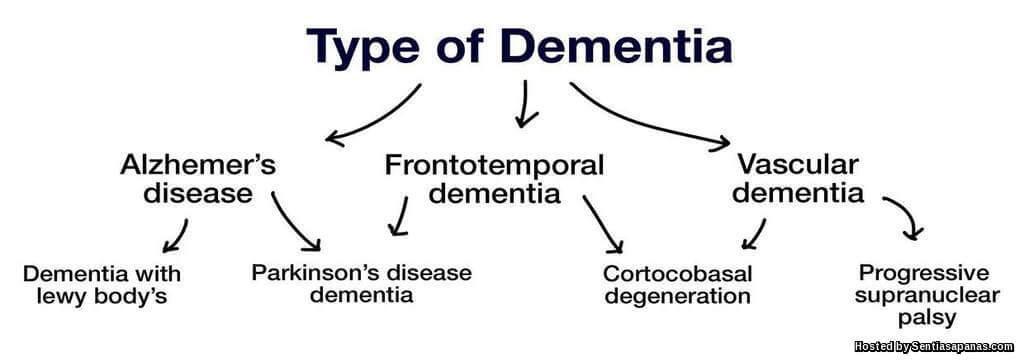 Apa Itu Penyakit Demensia (Dementia)?
