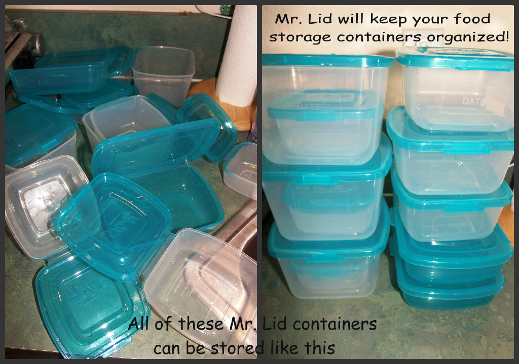 Mr Lid Food Storage Containers W Attached Lids Review
