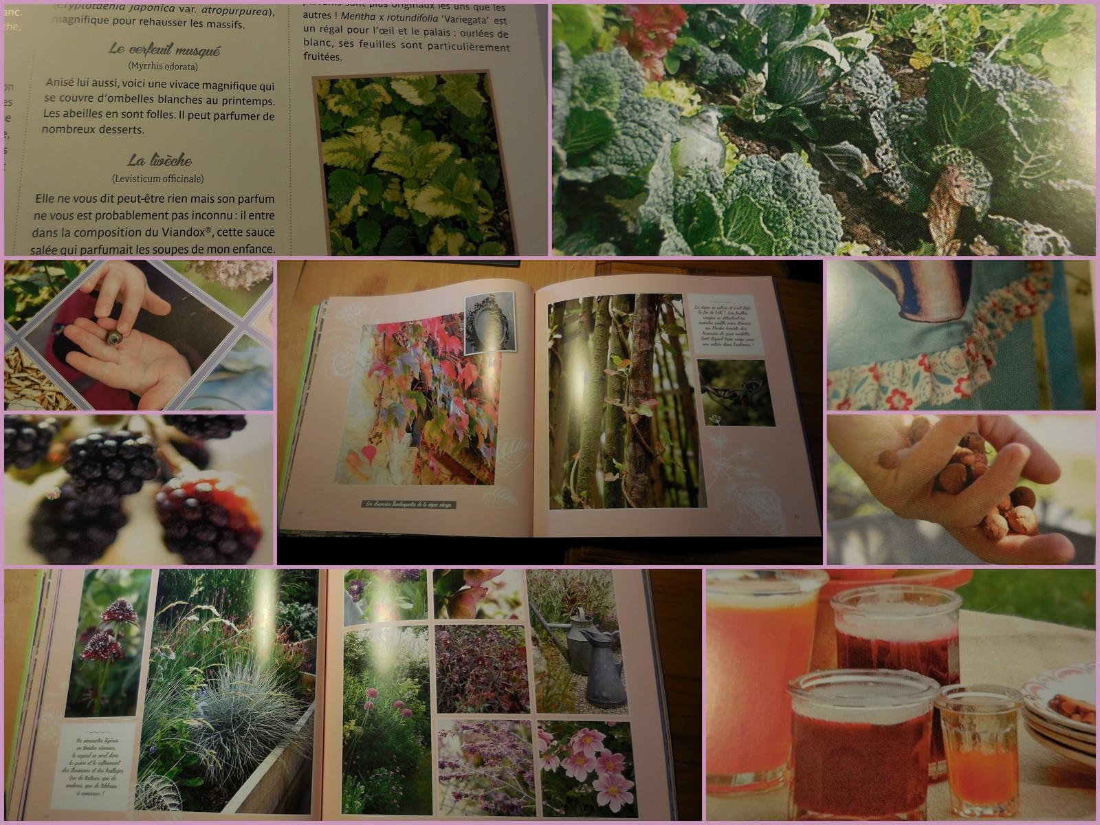 Cagouille\'s Garden : Mon Jardin de Grand Mère Secrets de Mère en ...