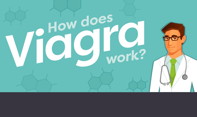 How Does Viagra Work?