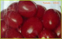 tomato seeds ahmedabad India