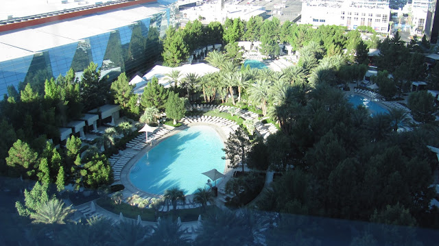 Photo poolside at Aria Resort and Casino, Las Vegas by Vegas Reviews
