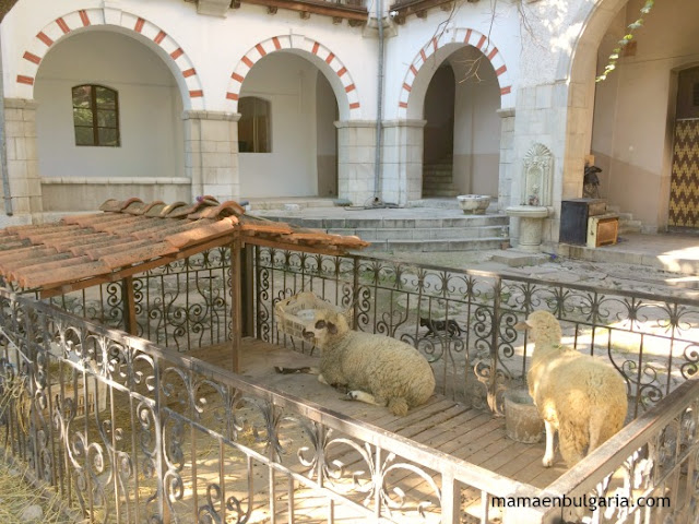 Ovejas Monasterio de Bachkovo Bulgaria