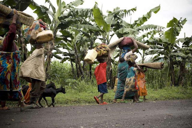 nord kivu, humanitaire