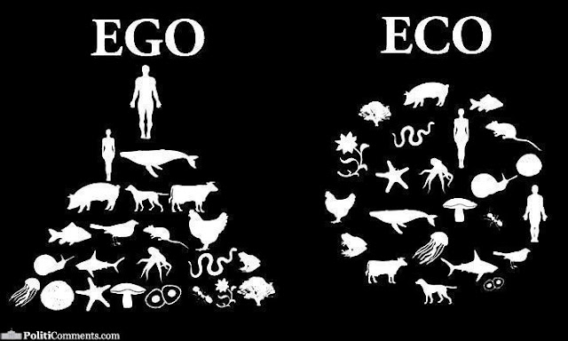 Confusion of ECO and Ego in nature