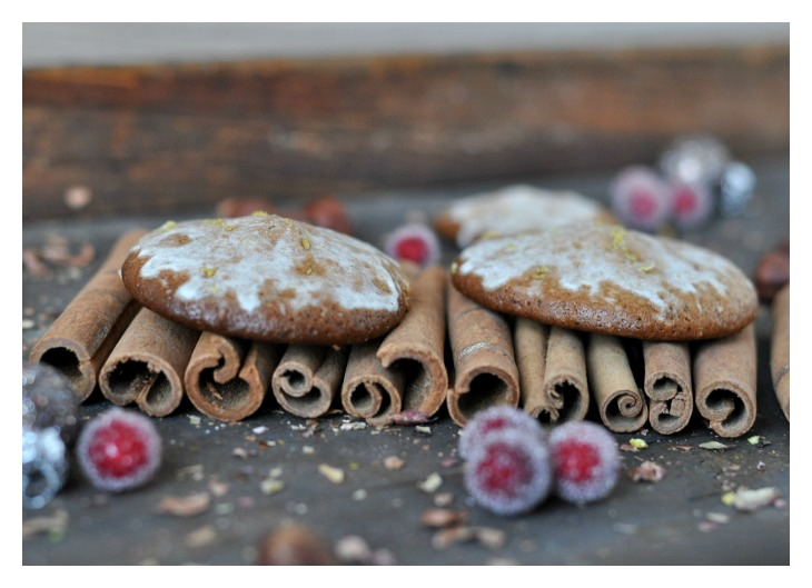 spiced hazelnut cookies, a gluten free treat not only for christmas