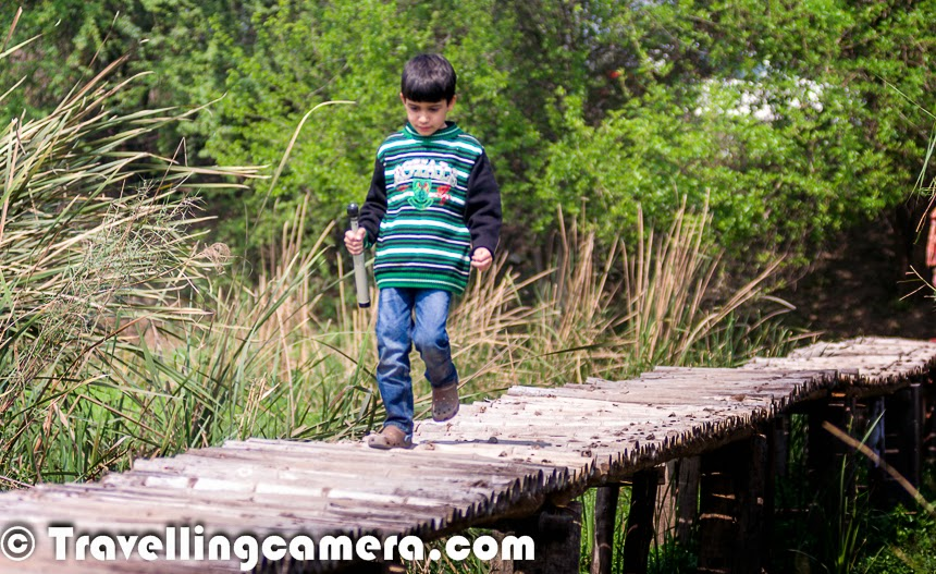 After doing a lot of research on dogs, 7-year-old Nishu got interested in birds. This happened when he noticed some colorful birds roaming around his garden. He loves to help his mom in the garden and during one of the weekends in winters he noticed some colorful birds he had never seen. The started a dialogue with his mom about birds and how they survive in cities like Delhi. And agenda for next weekend was finalized. Idea was to put some pots filled with water, so that more birds visit them :) ... Of-course, these pots daily filled with water and at time multiple times during summers. All this encouraged Nishu to know more about birds and other related stuff.Birding is essentially an observation of birds as a recreational activity. Watching birds is very addictive. Listening power of birders is amazing and this is very first step of discovering birds around them. For any birder it's important to notice these sounds and guess the birds or at least the type of bird, so that you can act accordingly. Birders are always excited to see new birds, but never lose an opportunity to watch birds doing various activities. It's also important to have the right set of equipment with you to observe these birds without disturbing them.Nishu also loves travelling and especially with everyone in family - His Mom/Dad, Nana/Nani, Dada/Dadi, Masi & Chhote Nana. And his favorite vehicle to travel is Tempo traveller, which has enough place to fit every family member and comfortable enough to have fun while travelling. He always carries his Nikon Coolpix camera, the binocular and telescope. Whenever we start talking about next trip, Jim Corbett is his first preference and second is any hill station. He loves the long-tailed birds like Yellow-Billed Blue Magpie, which are usually found in hilly regions. The above photograph shows Nishu with his Mom & Dad at Okhla Bird Sanctuary in Delhi during winters. Travelling to new places and meeting colorful wild wings are favorite activities of Nishant. Now many of the birds visit his garden, especially in morning when he leaves for the school. Birds are very useful for environmental education and awareness on environmental issues. Birds easily transmit values on respect for nature and the fragility of ecosystems. It's always good to have nature lovers around you who teach you to respect various aspects of preserving nature in most organically. Gradually we have seen that many of Nishu's friends have started following him as Birdera. Some of them have put water pots for birds in their gardens too. It seems that all of them discuss birds in school and many of their paintings show birds in different forms - flying through clouds, drinking water in a river, laying eggs on top of air-conditioner etc. It's very interesting to listen to their tales about birds. Pigeon is one of the common birds they see and draw in their paintings. After an inspiration from Nishu and his friends, I also tried few sketches with birds as one of the main subjects.Nishu loves going to the Zoo as well. He loves meeting most of the animals there but tend to spend more time around birds & notice their actions. With time, we have also started observing birds and now it feels that birds are far more active than most of the animals. And they demonstrate special behavior towards other birds.Nishu has a theory that the more colors you have in the garden, more colorful birds will visit you. This theory worked for him. He is very much into gardening as well and knows how to take care of different types of plants in various seasons. Recently Nishu encouraged his mom and masi to do something special for his friends who also want to have their tiny gardens in their apartments. Here is a link which shares more about 'Pot a Plant' activity on day before Holi Festival.While compiling this post, I realized that Birding is one of the passion that Nisu has and there are various things that relate him to the nature. Thanks Kissan for this brilliant idea to compile a post.The more we travel with Nishu, me and my wife know more about birds and hence it's becoming one of our hobby as well. For last few years, we have started tracking birding events happening in Northern states of India and we try to join different birding activities happening around us. This has helped us appreciate these flying creations of nature and care more about the way things are changing around us.