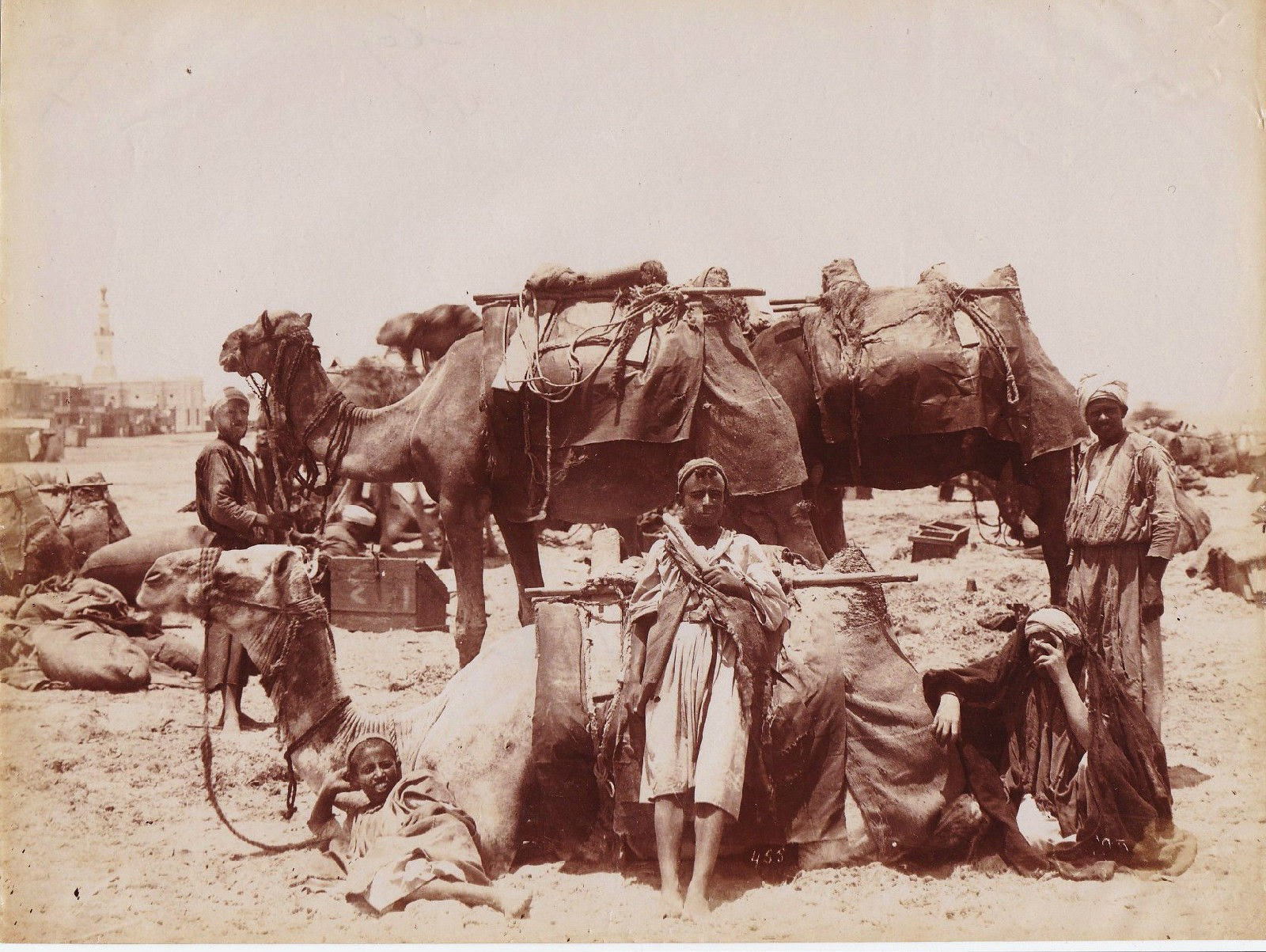 Arab bedouins with their Camels - Middle East Desert c1875