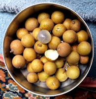The Longan Fruit, note the smooth texture and colour