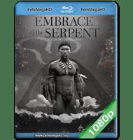 EL ABRAZO DE LA SERPIENTE (2015) FULL 1080P HD MKV ESPAÑOL LATINO