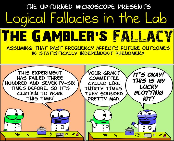 Gamblers falacy склад procter gamble