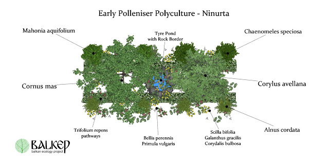 permaculture_polyculture_agroecology_Ear