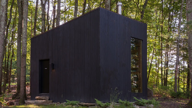TINY HOUSE TOWN: Upstate New York Library Cabin (320 Sq Ft