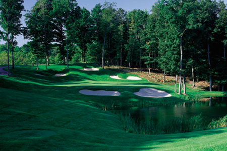American Golfer  West Michigan Golf Show attendees receive free golf      GRAND RAPIDS  Mich     Coming off an unprecedented and record breaking  year for rounds played  Treetops Resort is naturally very optimistic about  the 2012