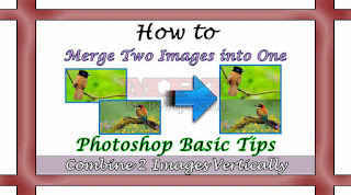 Learn How to Merge 2 Images into one Vertically via Photoshop