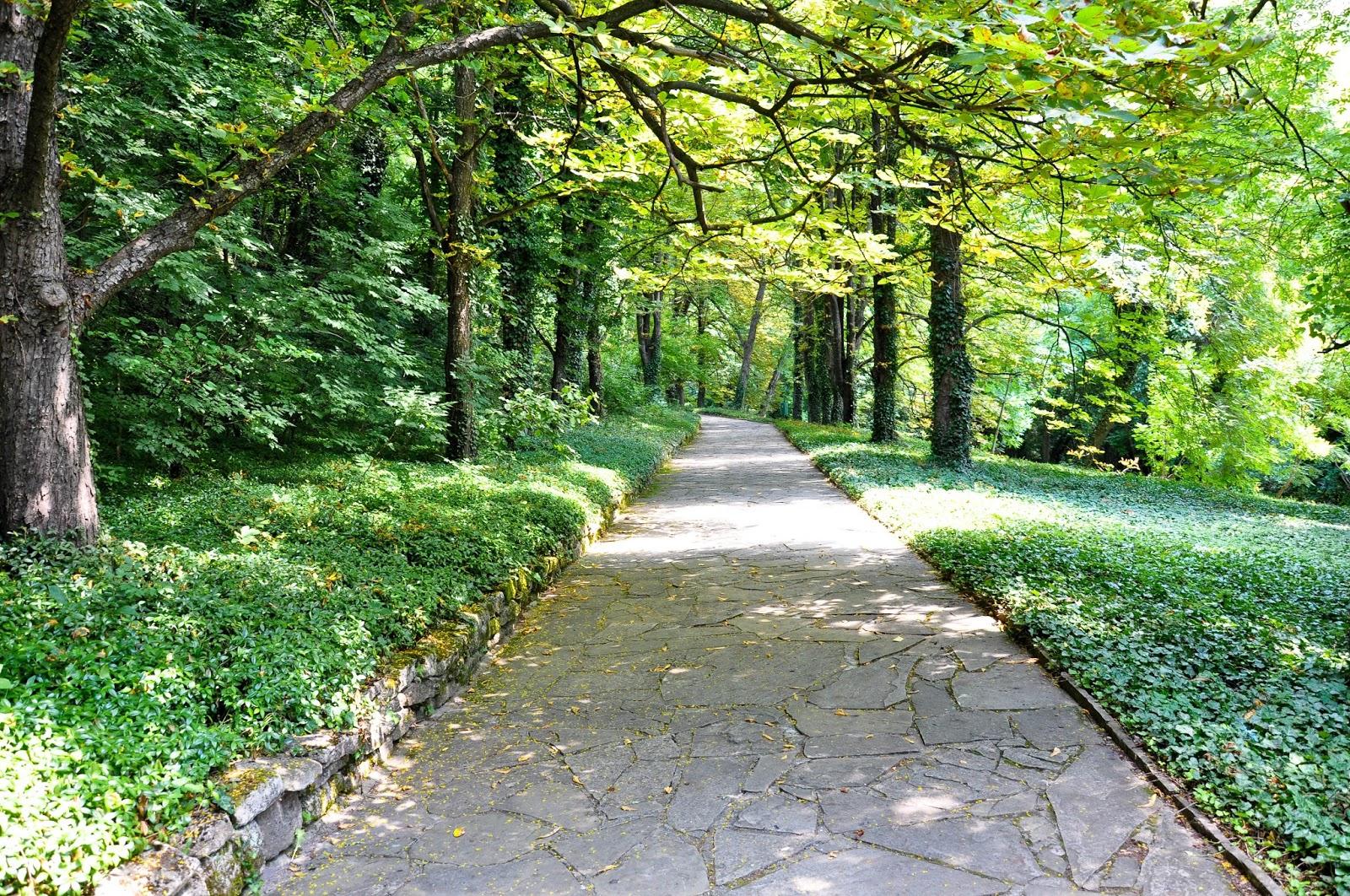 The forest path, Madara, Bulgaria