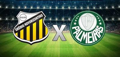 Novorizontino x Palmeiras Ao Vivo Hoje, ás 17:00 no Premiere - 23/03/2019