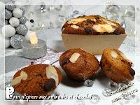 http://gourmandesansgluten.blogspot.fr/2014/12/pain-depices-aux-amandes-et-chocolat.html