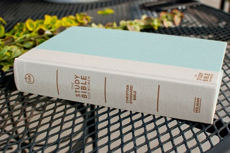 Aqua Blue Turquoise Hardcover Bible with White Spine and Gold Lettering