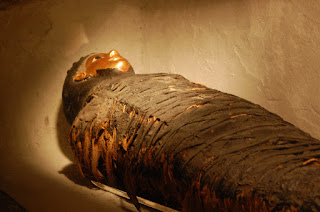 7 awesome Facts About Mummy