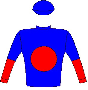 Liege - Silks - Owner: Mr C J H Van Niekerk - Colours: Royal blue, red spot, halved sleeves, royal blue cap