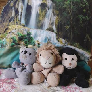 koala, małpka i lew